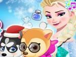 Elsa Hayvan Bakımı